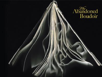 The Abandoned Boudoir