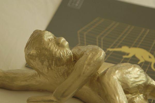 Lisa Roet: Golden Monkey